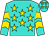 Turquoise, gold stars, gold chevrons on sleeves (Cally Herrington)