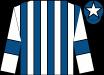White & royal blue stripes, royal blue armlet, royal blue cap, white star (Deise Country Store Limited)