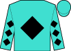 Turquoise, black diamond, black diamonds on sleeves, turquoise cap (Rockingham Ranch)
