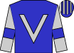 Blue, silver v, blue armlets on silver sleeves, blue and silver striped cap (Fidelity Racing Syndicate)