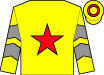 Yellow, red star, yellow sleeves, grey chevrons, red hoop on cap (Zeng Shengli)