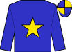 blue, gold star, blue & gold quartered cap (Hk Club Racing Syndicate)