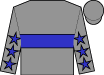 Gray, blue 'wt' brand, blue stars on sleeves, gray cap (Gray, Jill And Dr William T)