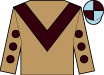 Light Brown, brown chevron, brown spots on sleeves, light blue and brown quartered cap (D P Racing)