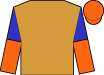 Neon orange, royal blue yoke and 'mss' ,blue and orange halved sleeves, orange cap (Martin Schwartz)