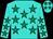 Turquoise, emerald green stars (Mr R J Miller & Ms P J Knott, Messrs D A Gafney, I)