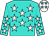 Turquoise, white stars, white stars on sleeves, white cap, turquoise stars (Nbs Racing & Ben Watson)
