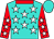 Turquoise, white stars, red collar and sleeves, white stars, turquoise cap (Messrs F Bronkhorst & H L Neethling)