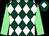 Dark green and white diamonds, light green sleeves, dark green cap, white diamond (Paul Nicholls & Jack Barber)