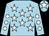 Light blue, white stars, light blue sleeves, white spots, light blue cap, white star (Mr T Reid)