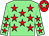 Light green, red stars, red cap, light green star (Mr P J Donnison & Mr I M Brown)