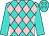 Turquoise and pink diamonds, turquoise sleeves (Tm Thoroughbred Racing, Llc)