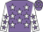 Mauve, white stars, white sleeves, mauve stars (Mr W J E Scott & Mrs M A Scott)