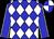 Blue and white checked diamonds, blue sleeves, white seams, quartered cap (Messrs B & M Du Toit & Mr & Mrs A C Greeff)