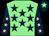 Light green, dark blue stars, dark blue sleeves, pink stars, dark blue cap, light green star (Leaveitouthorse Syndicate)