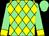 Light green, yellow diamonds, yellow cuffs, light green cap (Stag Horn Thoroughbreds)