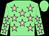 Light green, pink stars, light green cap (CHRD Syndicate)