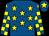 Royal blue, yellow stars, yellow and royal blue check sleeves, royal blue cap, yellow star (Mr Ian Furlong)
