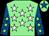Light green, white stars, royal blue sleeves, light green stars, light green cap, royal blue star (The Jago Family Partnership)