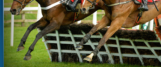 PUNCHESTOWN 2015 - Your ultimate guide