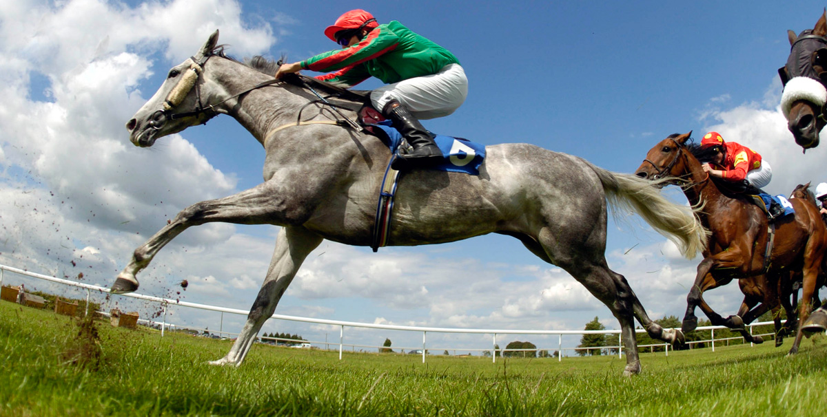 Horse Racing Results - Live Coverage | Sky Sports